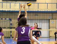 FC Argeș – CNS CSV Cetate Deva 3-0, în runda cu numărul 13 din liga secundă la volei feminin