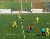 CS Mioveni, remiză cu Luceafărul Oradea, scor 2-2, în liga secundă