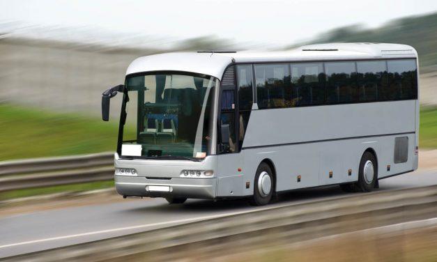 ( P ) 4 tipuri de transport pe care le poţi găsi la Florin Trans